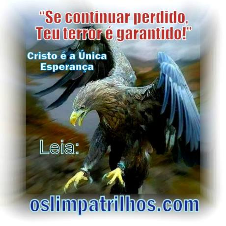Somos aguias